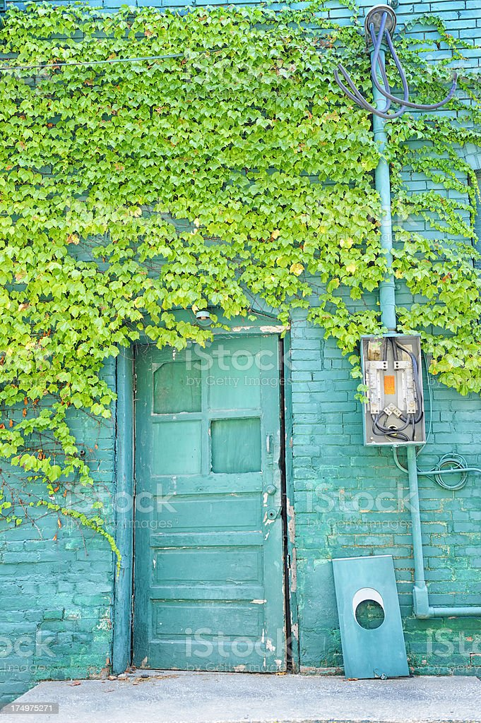 Old Blue Green Door and Brick Wall With Creeping Ivy stock photo