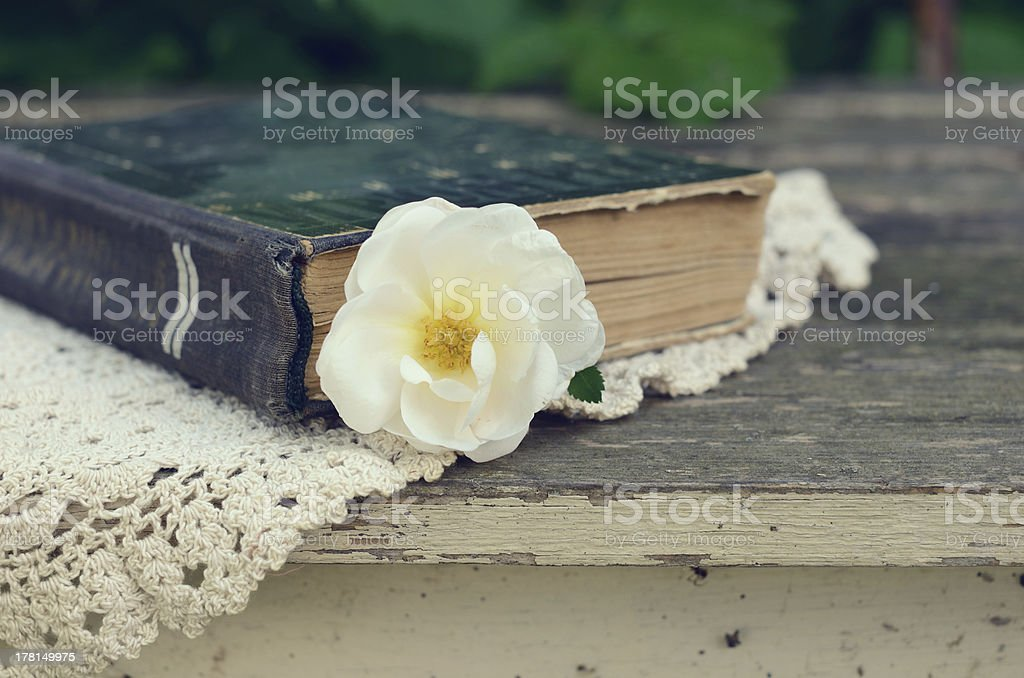 Old book and dog rose flower royalty-free stock photo