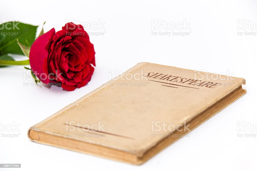 Old book by Shakespeare and red rose on white background stock photo