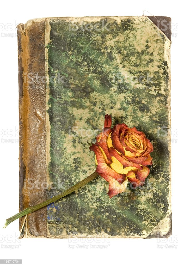 old book cover & rose stock photo