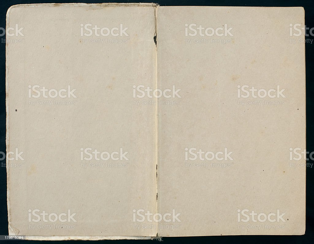Old Book Showing Two Blank Pages royalty-free stock photo