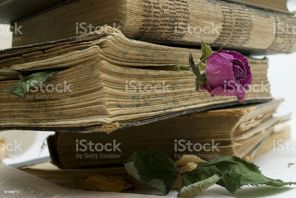 Old books in library royalty-free stock photo