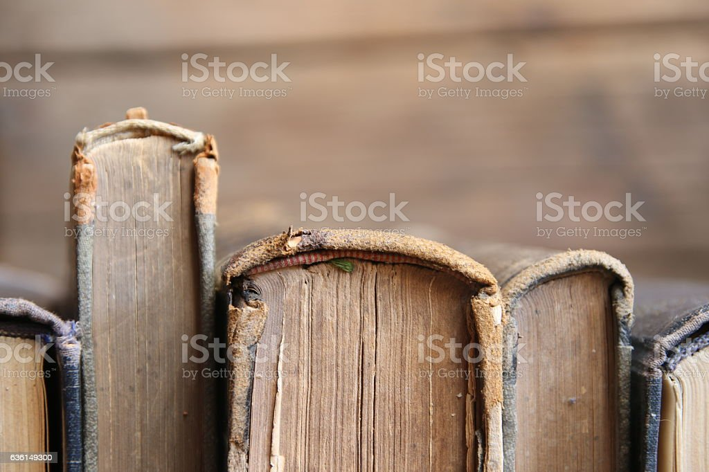 Old books on wooden planks, soft focus, copy-space stock photo