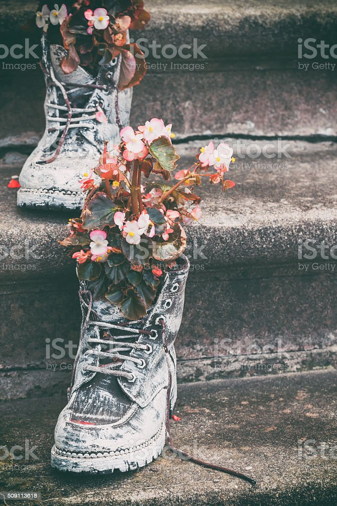Old boots with flowers as element of garden design. stock photo