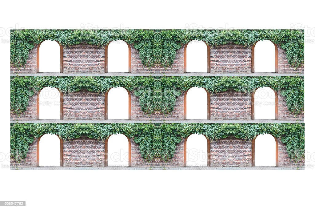 Old brick wall  with 12 arched doorway and ivy. stock photo