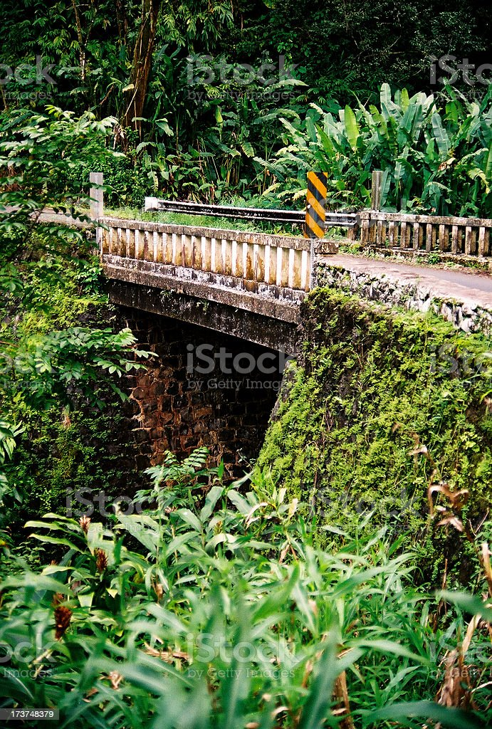 Old bridge on the road to Hana Maui royalty-free stock photo