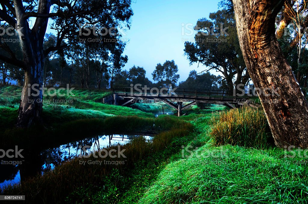 Old Bridge over Creek with Gum Tree royalty-free stock photo
