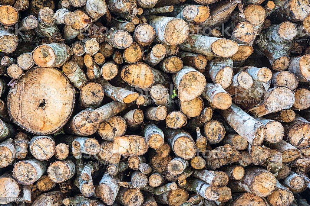 old brown wood stump royalty-free stock photo