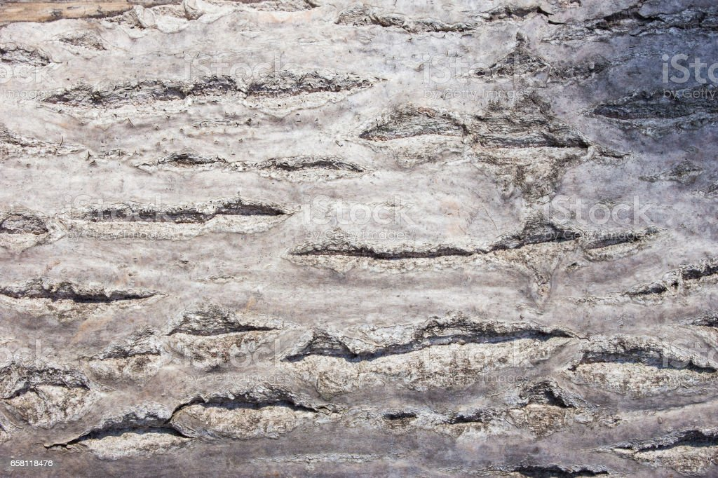 old brown wooden surface stock photo