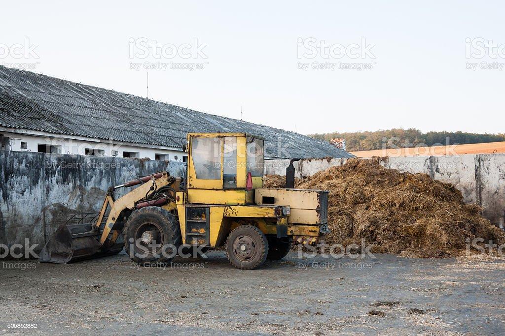 Old bulldozer near heap of manure stock photo