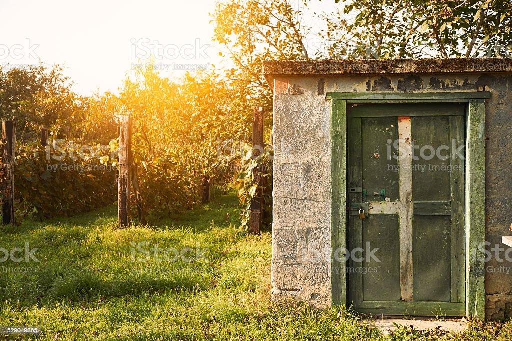Old cabin on wineyard stock photo