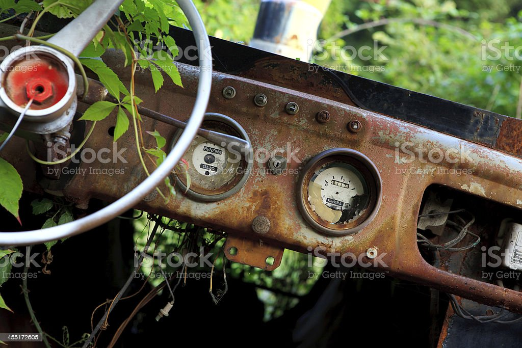 Old car interior and forest royalty-free stock photo