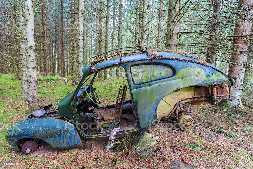 Old car wreck standing in woods stock photo