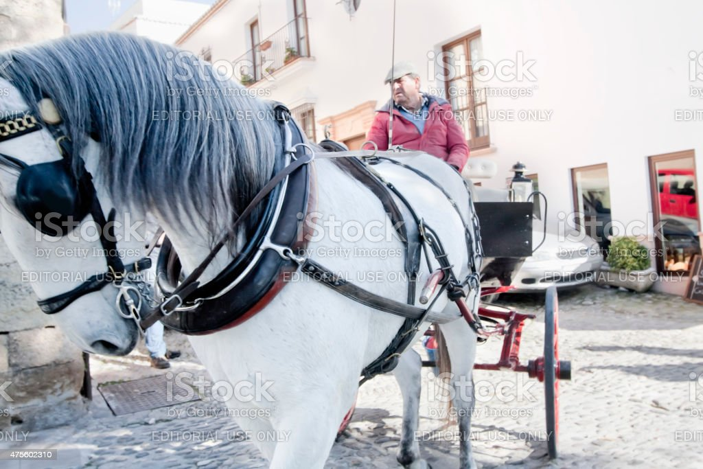Old carriage horse drawn in Ronda, Spain. stock photo