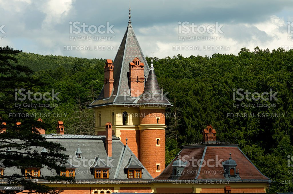 Old castle in forest stock photo