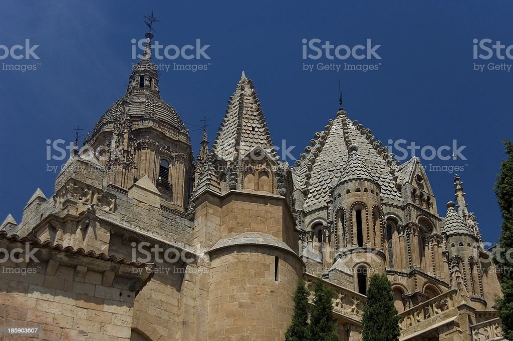 Old Cathedral of Salamanca. Spain stock photo