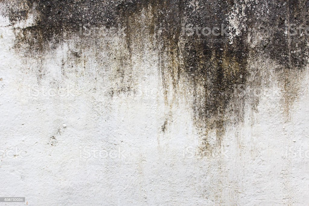 Old cement wall grunge background stock photo