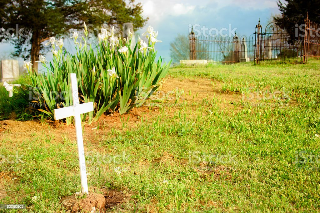 Old cemetary with cross, tombstones and rusty gates. Iris flowers. stock photo