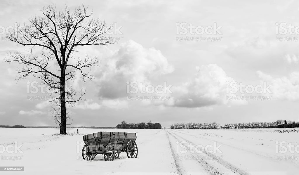 old chuck wagon sitting in snow beside tall bare tree stock photo