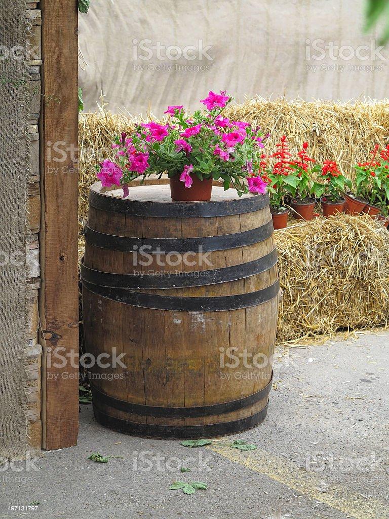 Velho clássico barril de madeira com flores e hay foto de stock royalty-free