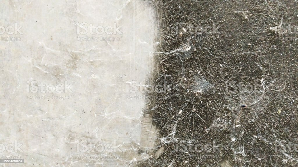 Old cobwebs stock photo