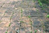 Old concrete pavement.
