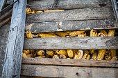 Old corn storage