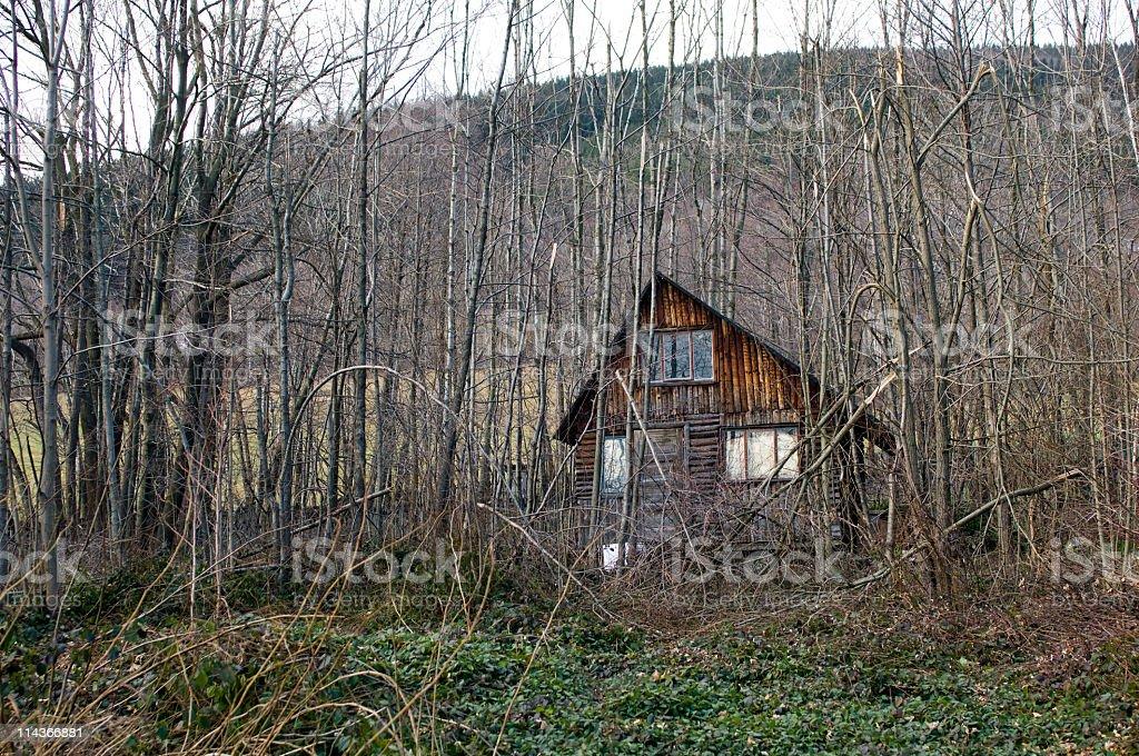 Old Cottage inside Brushwood. royalty-free stock photo