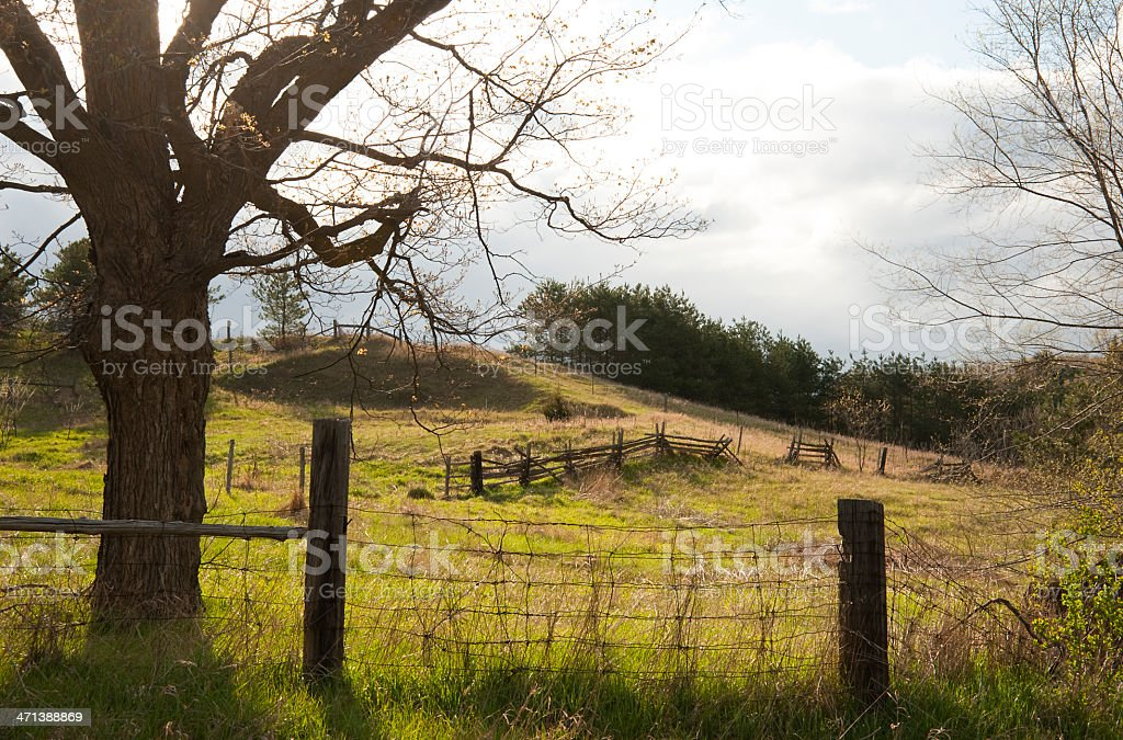Old Country Fence royalty-free stock photo