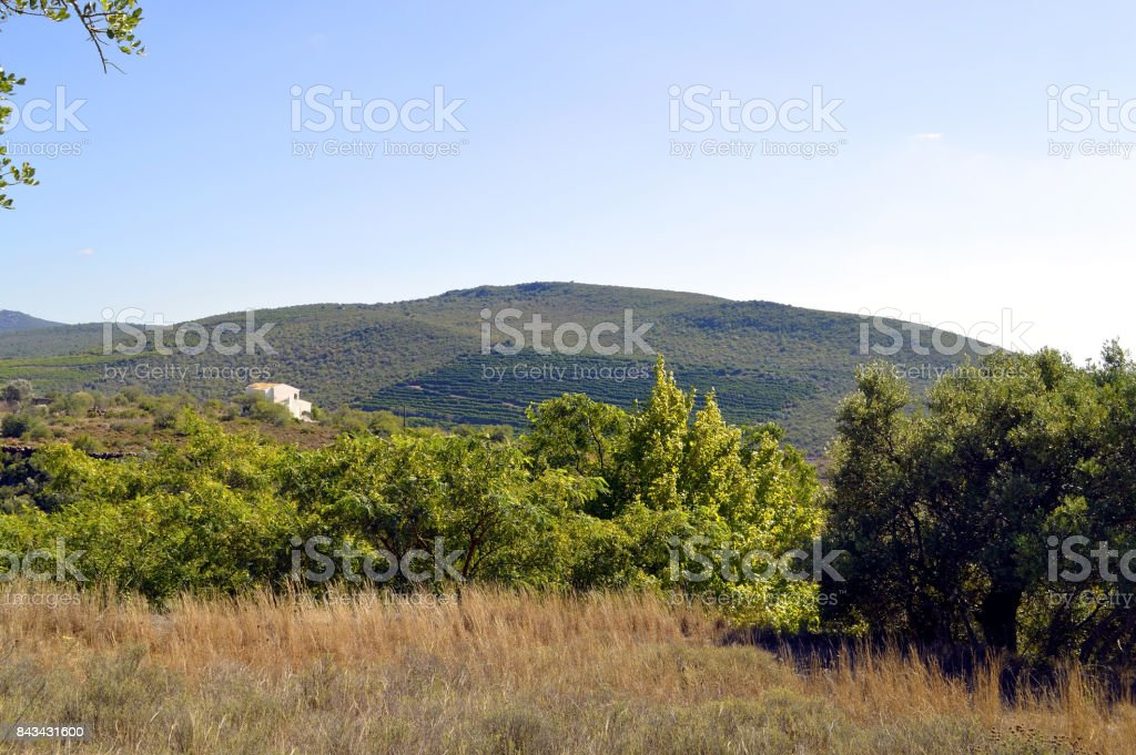 Alte countryside in Portugal stock photo