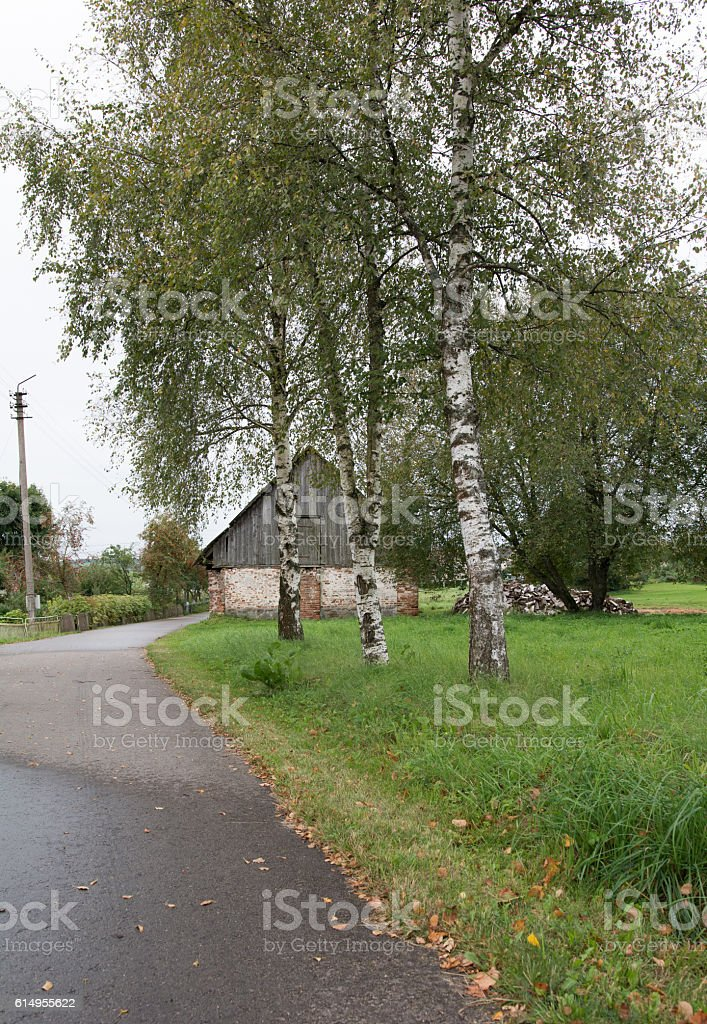 Old coutry road stock photo