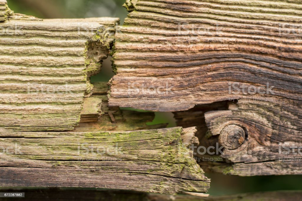 Old cracked wood fence detail stock photo