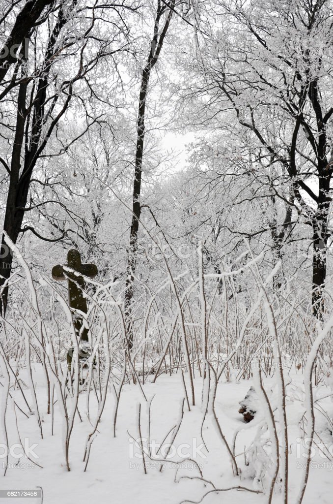 old cross in winter forest stock photo