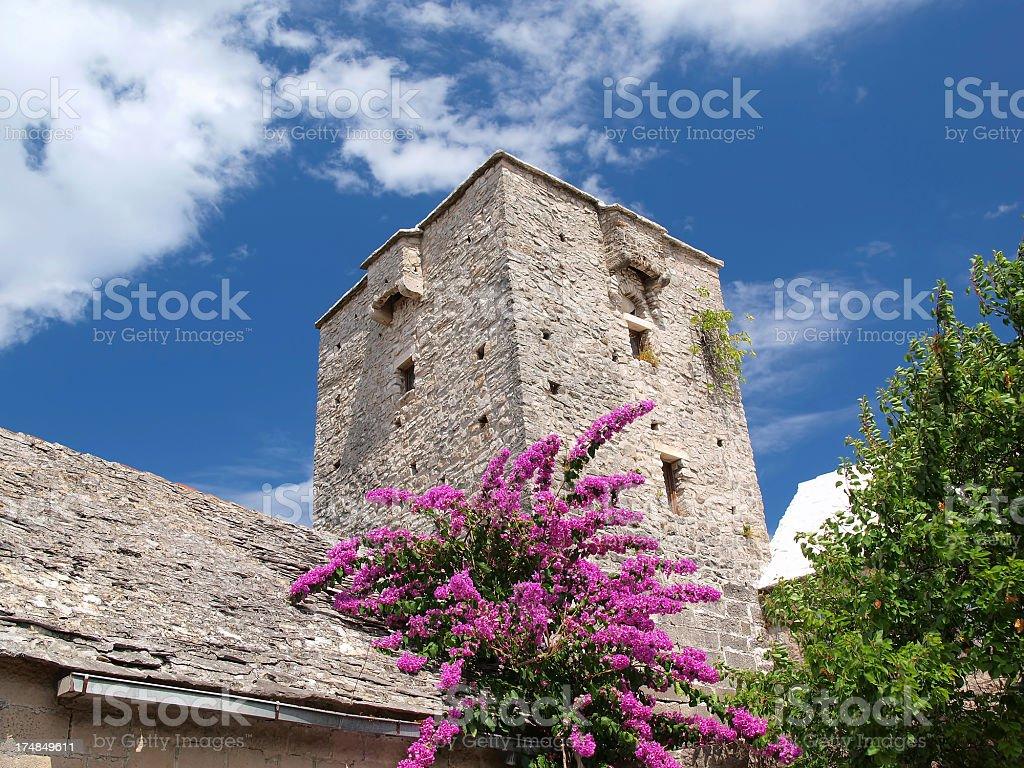 Old Dalmatian villa royalty-free stock photo