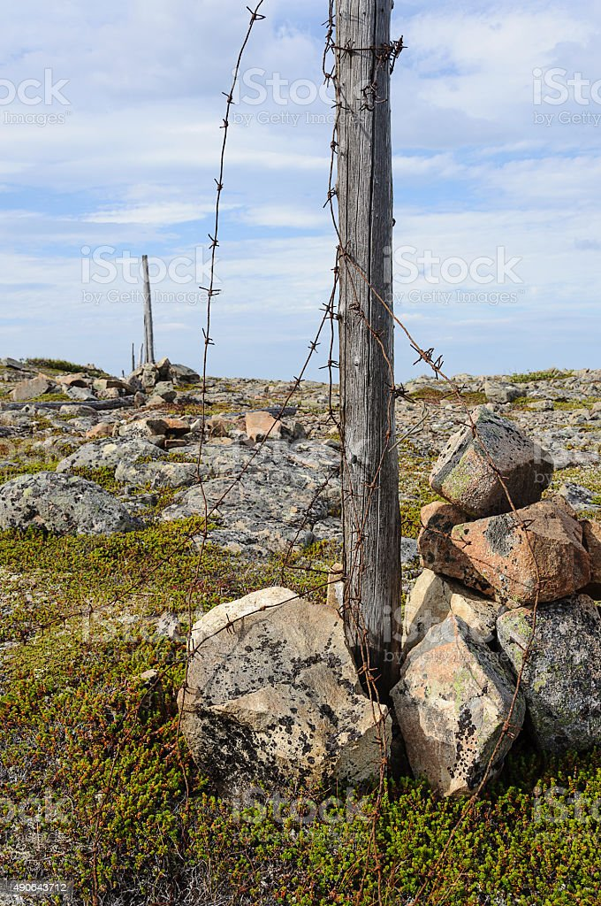 Old destroyed barbed wire fence stock photo