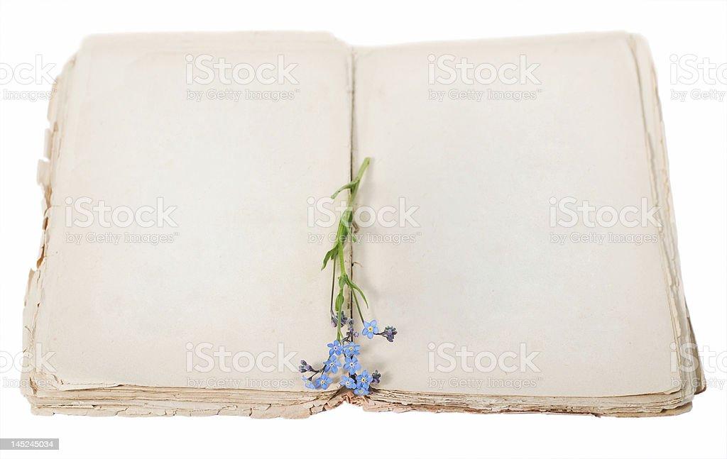 old diary royalty-free stock photo