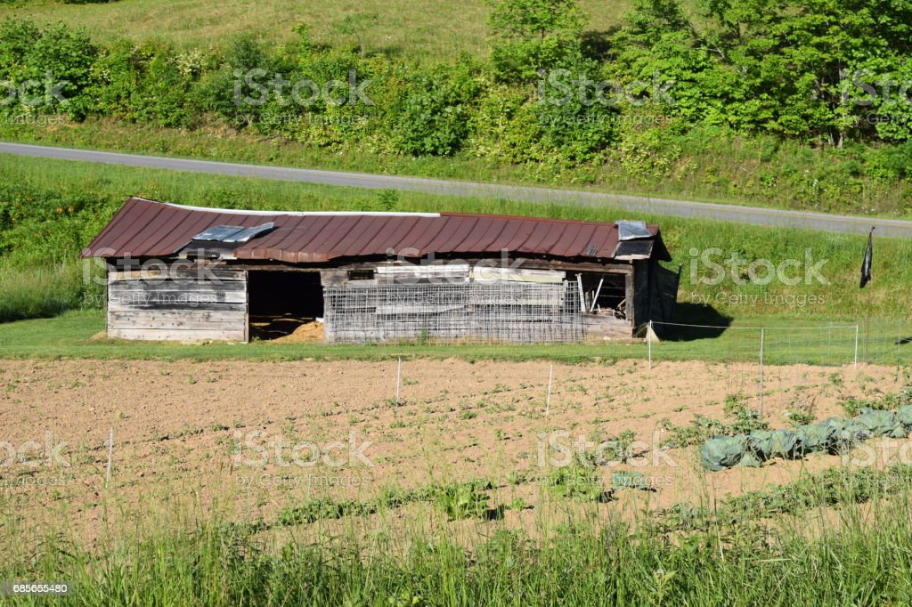 Old dilapidated barn in a farmer's field stock photo