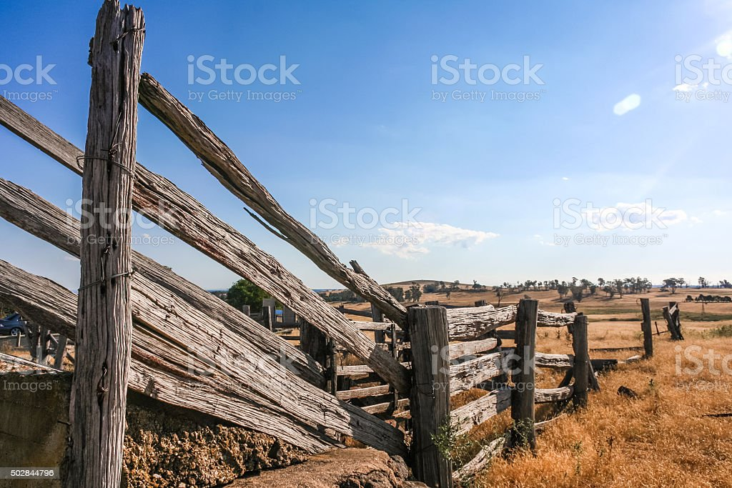 Old dilapidated wooden cattle race fence in the country stock photo