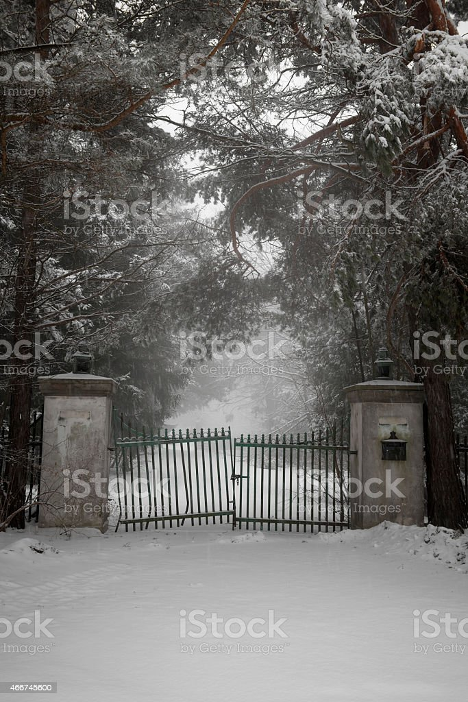 Old driveway gate in winter stock photo