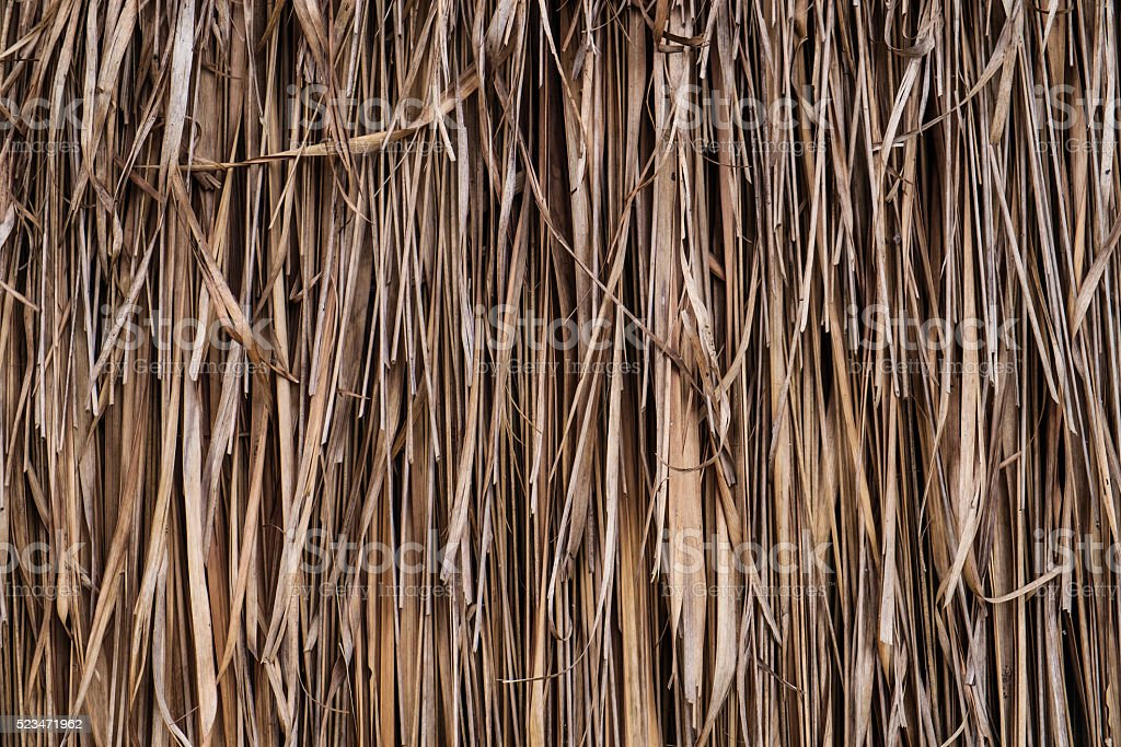 Old dry straw palm texture stock photo