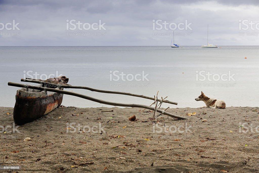 Old dugout fishing rowboat and dog. Lamen Bay-Epi island-Vanuatu. 5406 stock photo