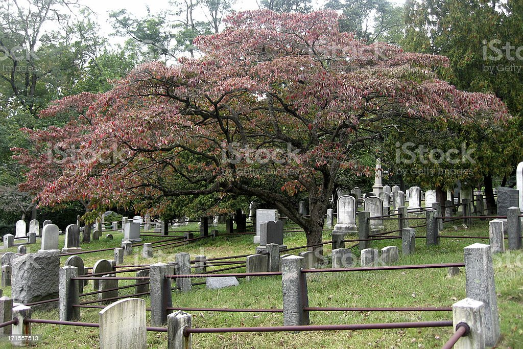 Old Dutch Church Burial Ground stock photo