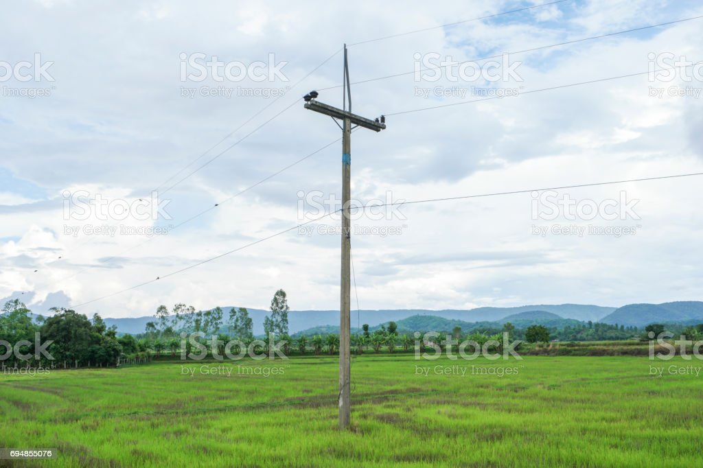 Old electric pole in countryside. stock photo
