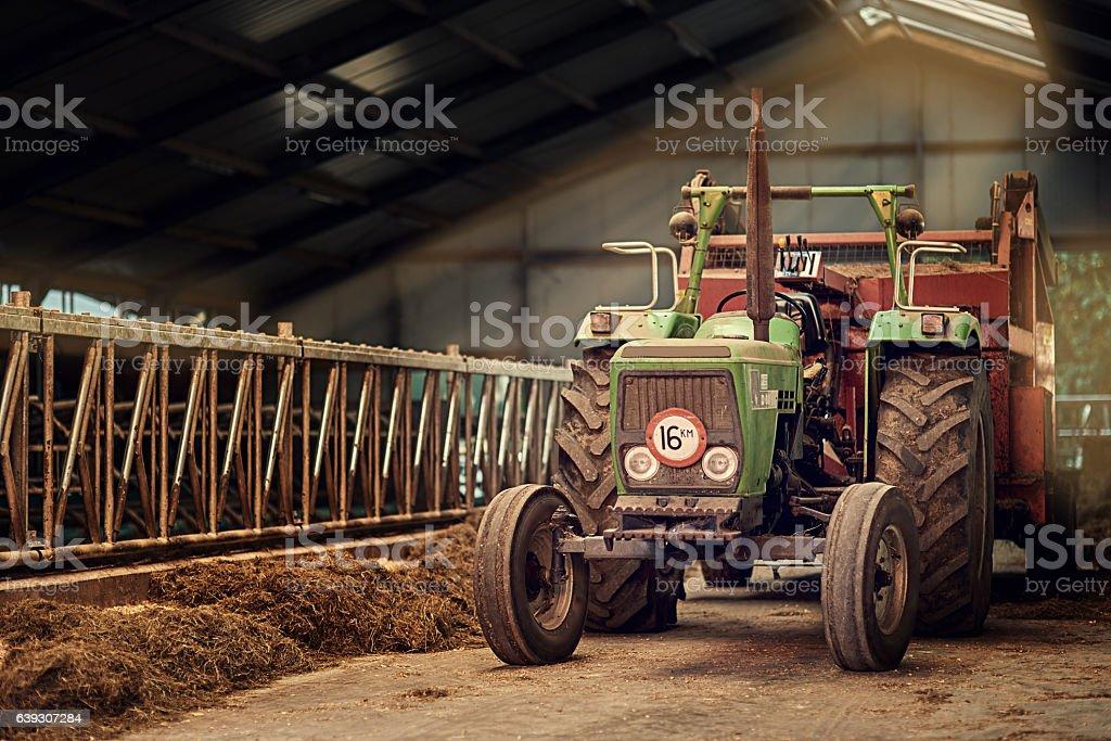Old faithful stock photo
