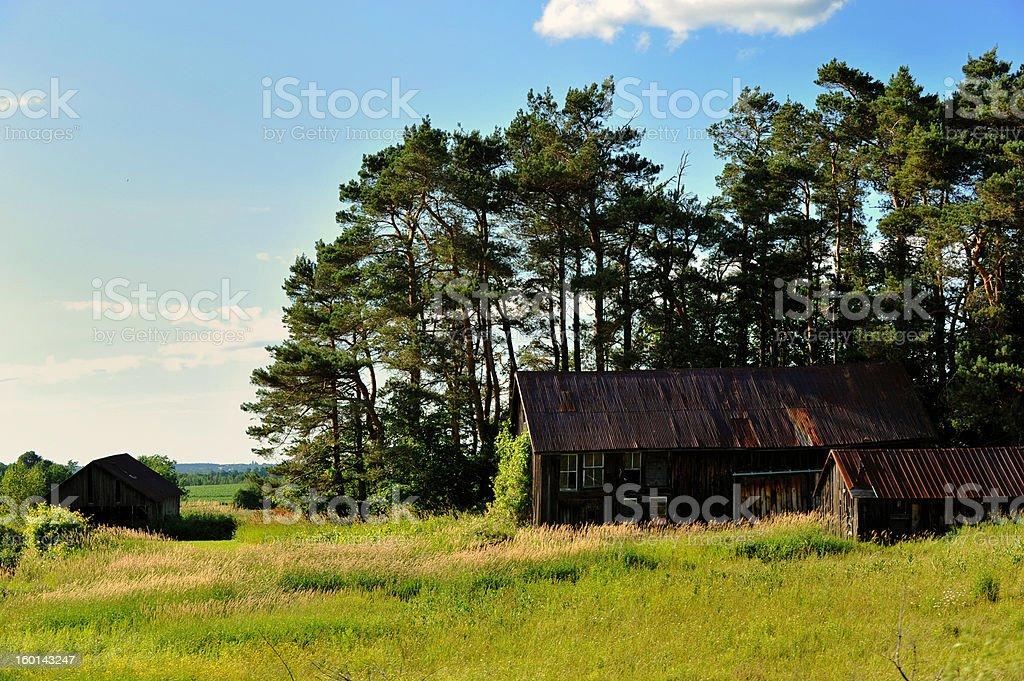 Old Farm Barns royalty-free stock photo