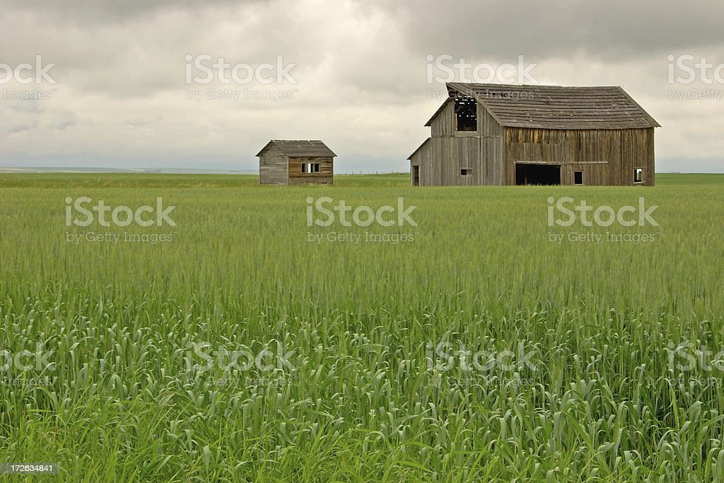 Old Farm Homested royalty-free stock photo