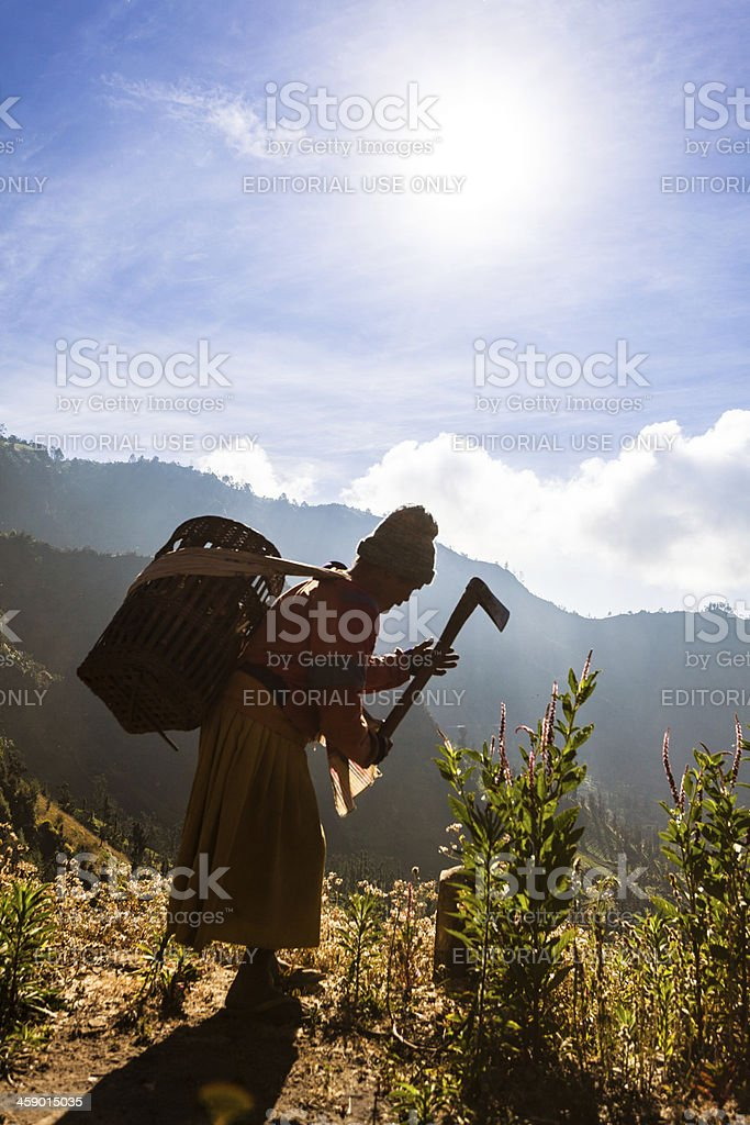 Old Farmer Woman working with a Hoe in Indonesia royalty-free stock photo