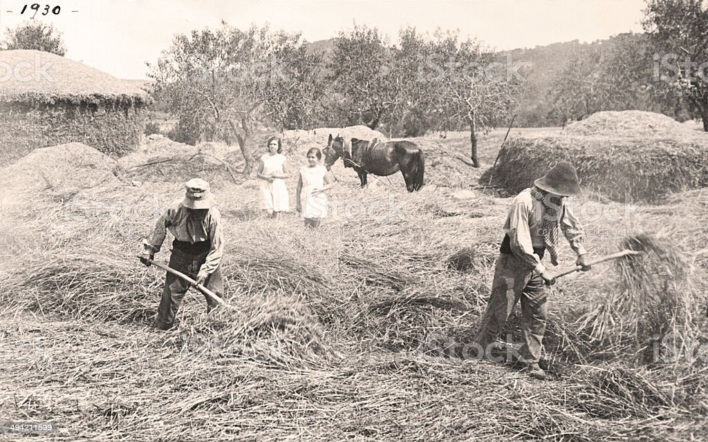 Old farmers stock photo