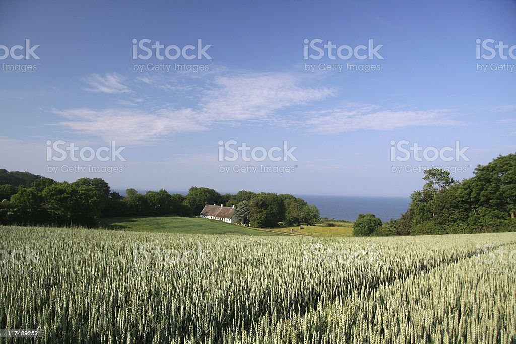 Old farmhouse and beautiful landscape in southern Jutland, Denmark royalty-free stock photo