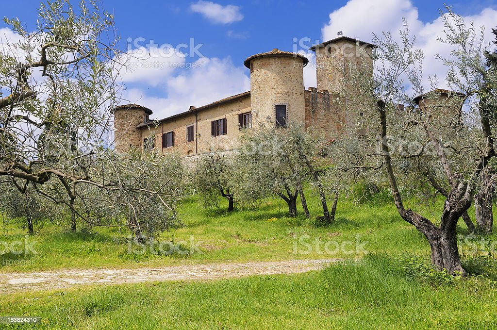 Old Farmhouse and Olive Trees royalty-free stock photo